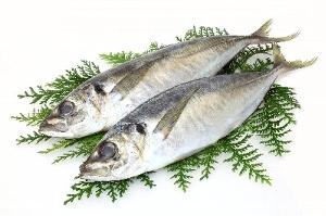 EPAが豊富な青魚